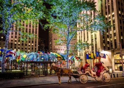 newyork3-1024x742